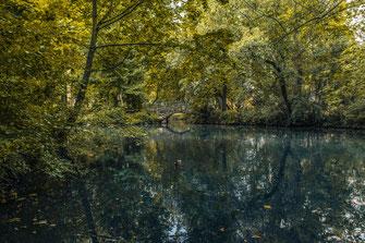 Einsame alte Steinbrücke im Park von Mainhatten Frankfurt Natur Landschaft Naturfotografie Landschaftsfotografie Landschaftsfoto Poster Bernus Teich Bäume Wasser Stille Entspannung Relax Flora Fauna Enten See