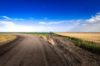 Russlands unendliche Weizenfelder als Wandposter online kaufen oder kostenlos lizenzfrei herunterladen