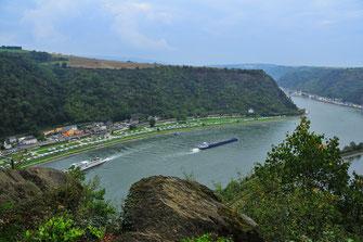 Fotos von dem Fluss Rhein - Burgen und Weinreben in Deutschland
