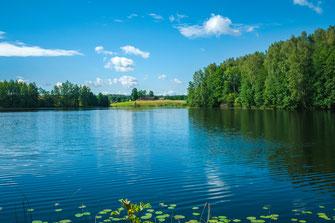 Unberührte Natur in Lettland mit zahlreichen Seen