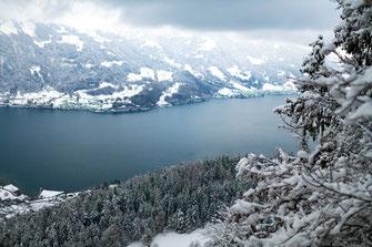 Brienzersee, Kanton Bern, Schweiz