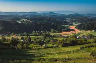 Weinanbau und Dorflandschaft bei Morgengrauen nahe Krapina Kroatien
