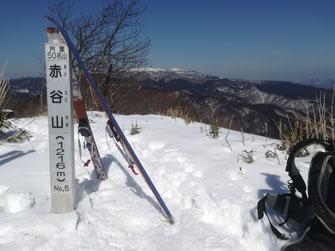 赤谷山の頂 後ろは氷ノ山