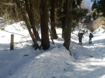 戸倉峠から赤谷山の登り口 道標が出ている