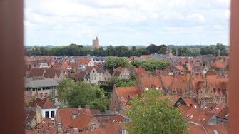 Uitzicht op Brugge