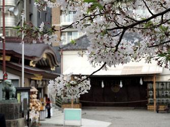 いーもんさん:東京浅草・浅草神社境内