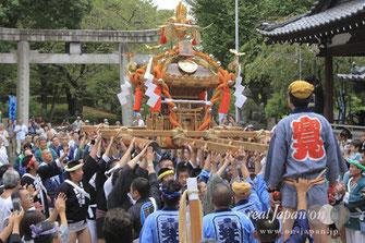 牛嶋神社大祭・全町会の神輿宮入シーンを収録