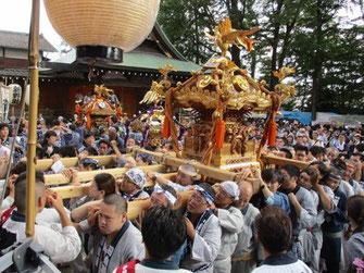 下北沢,9/2,3 北澤八幡神社例大祭