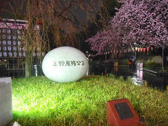 svanejyuさん:雨の上野恩賜公園