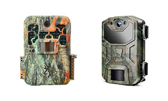 Trail Cameras (must-have for every wildlife photographer )