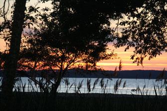 camping-devant-le-lac-de-sanguinet
