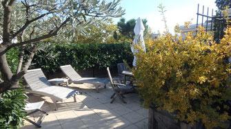 Plantation en bac sur toiture terrasse
