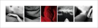 Autopsia - 2004/2005