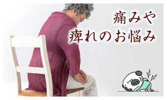 痛みや痺れの症状を改善する漢方薬ページへ
