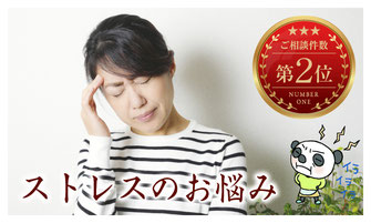 ストレス症状を改善する漢方薬ページへ