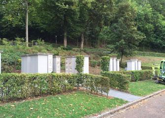 Friedhof , Kollnau - Lph 8