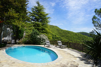 rental-holidays-house-private-pool-heated-cottage-le-colombier-saint-veran-grands-causse-natural-park-aveyron-occitanie-south-france