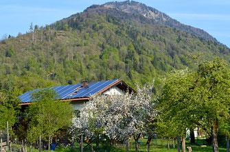 Umweltbewusster Bauernhof Oberaudorf der Pechlerhof
