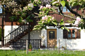 Ferienhaus mit Ferienwohnungen in Oberaudorf im Pechlerhof