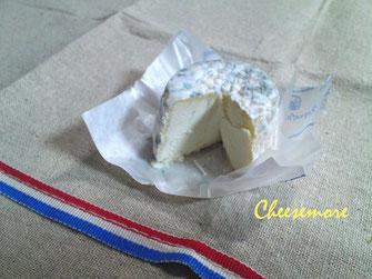 マコネ_フランスチーズ