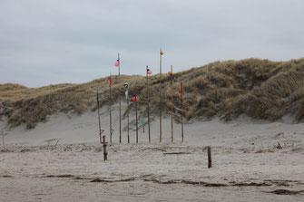 Insel Amrum Norddorf Strand Dünen Fahnen