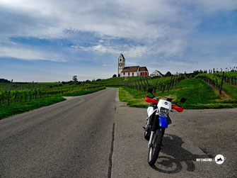 Motorradtour, Türkei, KTM Motorrad, Autobahn, Brücke, Wälder