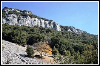 Plateau de Briasq (Escragnolles)