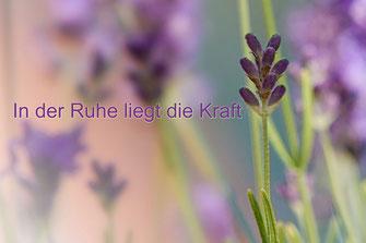 """Spruchkarte Lavendel """"In der Ruhe liegt die Kraft"""""""