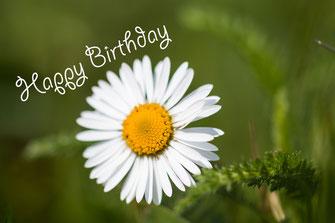 Happy Birthday-Geburtstag Grussskarte Gänseblümchen