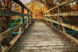 Holzbrücke-im-Wald