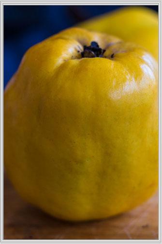 Quitte gelb-ganze Frucht