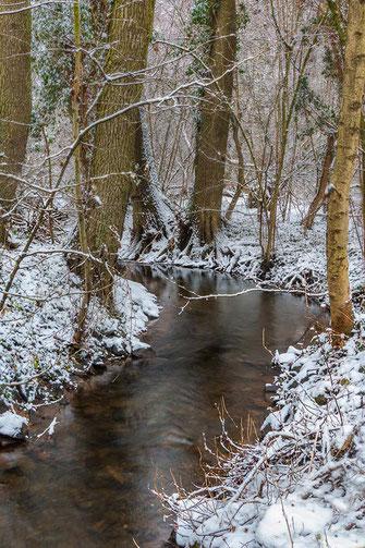 Winterlandschaft am Bach mit Bäumen und Schnee