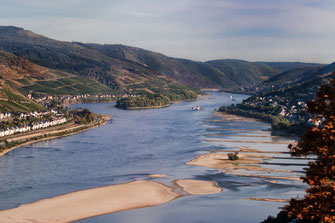 Rhein-Landschaft bei Bacharach