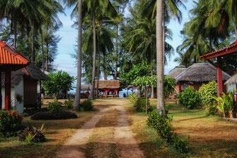 Weg zwischen Bungalows und Palmen am Meer auf Ko Lanta in Thailand