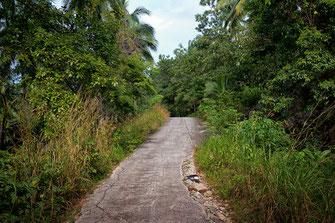 Dirt Road mit Schlaglöchern auf Koh Phanghan - Nationalpark