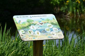 panneau pédagogique, mare, rivière, écologique, interprétation, éco-tourisme, nature