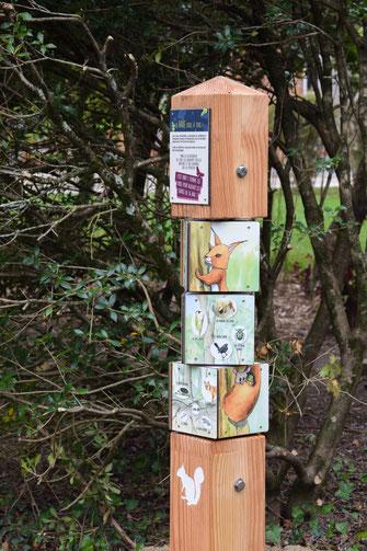 cubes à tourner, panneaux pédagogiques, interprétation, illustration, nature, foret, bois, animaux, éco-tourisme