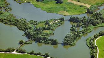 Luftbild von der Vogelinsel