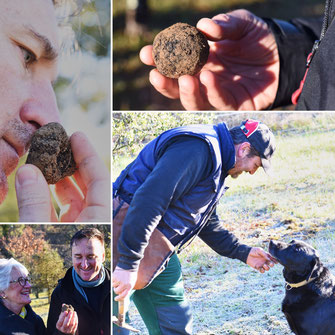 Black truffle hunting