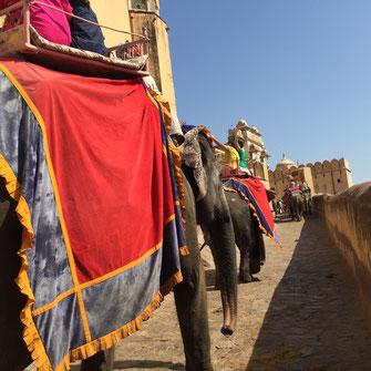 Amber Fort Jaipur Textilrundreise Indien