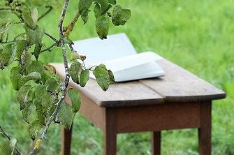 Der kleine Holztisch und Stuhl unter dem Kannenbirnenbaum, welcher an Lesungen zum Einsatz kommt.