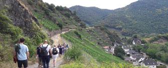 Die wandernde Weinprobe im Ahrtal an der Ahr von Altenahr bis nach Mayschoß in 2 Stunden inklusive Weinprobe.