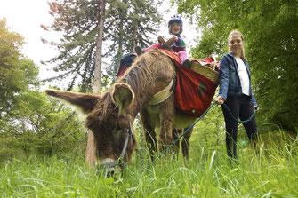 Les ânes de Madame - Balades accompagnées en Sologne, Val de Loire, châteaux de Chambord, Cheverny, Villesavin, du Moulin - Vacances nature en famille et entre amis - Trésors cachés du Val de Loire