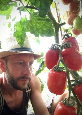 Tomaten sind voll mein Ding, aber so richtig!