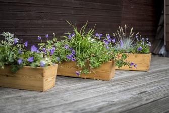 Blumenkästen aus Holz