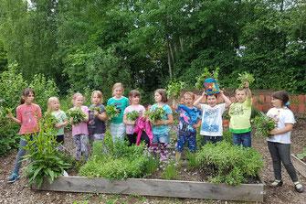 Umweltbildung Schulgarten (Foto: LBV Referat Umweltbildung)