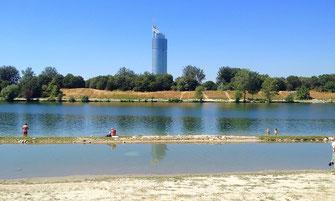Flachwasserzone neue Donau