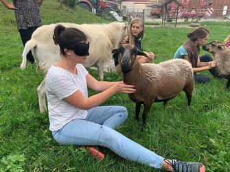Unsere Seminarteilnehmer üben sich in praktischen Anwendungsaufgaben. So sieht die Fachkraftweiterbildung zur Tiergestützten Arbeit aus.