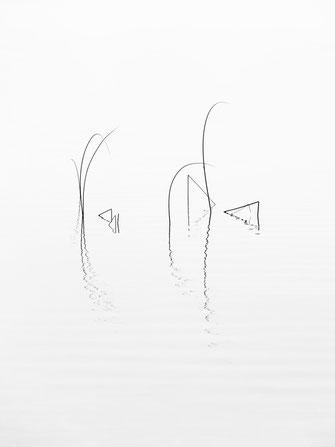 Zenssee, Minimalismus, Fotografie, Spiegelung, See, photography, moderne, Fotokunst, minimalism, minimalist, minimalistisch, Holger Nimtz, Kunst, fine art, Uckermark,