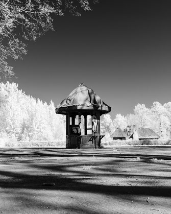 Infrarotfotografie, Berlin, Spreepark, Plänterwald, Treptower Park, Infrarot, Holger Nimtz, Infrared, Fotografie, Photography, Infrarotaufnahme, Fotokunst, Wood-Effekt,